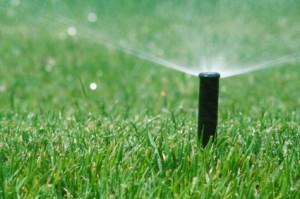 Upgraded Irrigation System
